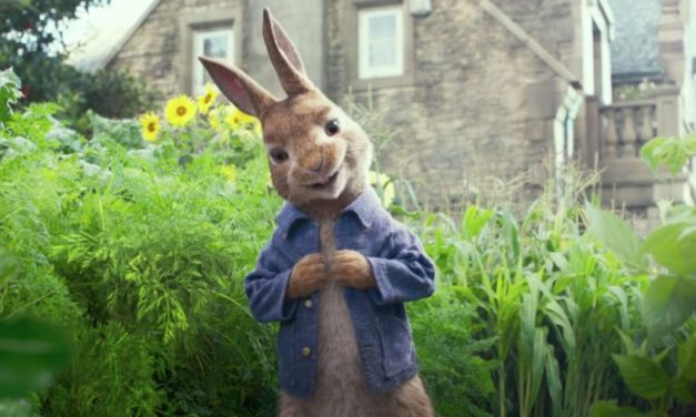 Peter Rabbit Rocks